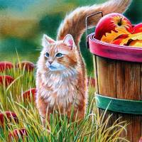 Online jigsaw puzzles cat BigPuzzle.net - free online jigsaw puzzles full screen games! Play free! Bigest online Puzzles with rotation options!